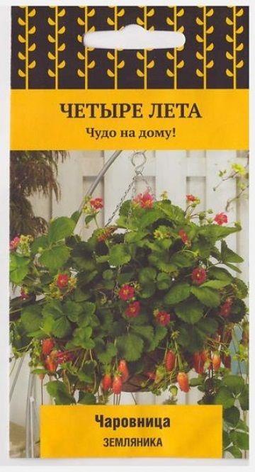 Земляника Чаровница