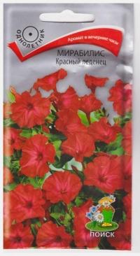 Мирабилис Красный Леденец