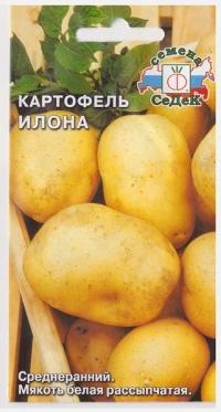 Картофель Илона
