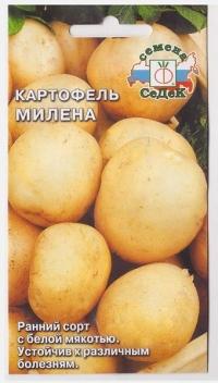 Картофель Милена