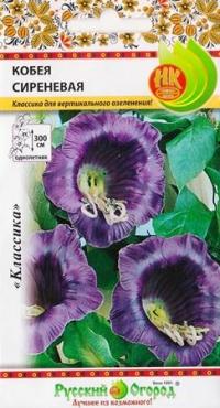 Кобея Сиреневая (фиолетовая)