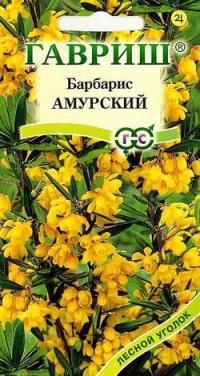 Барбарис Амурский