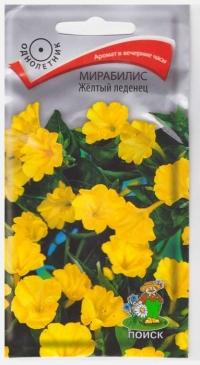 Мирабилис Желтый Леденец