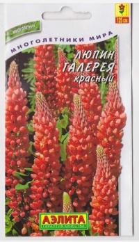 Люпин Галерея красный