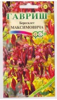 Бересклет Максимовича