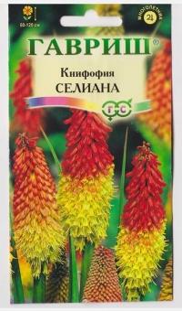 Книфофия Селиана ягодная
