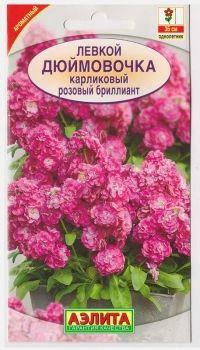 Левкой Дюймовочка розовый бриллиант