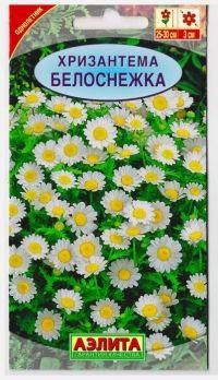 Хризантема Белоснежка