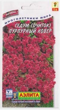 Седум Пурпурный ковер
