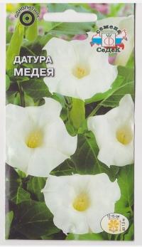 Датура Медея белый