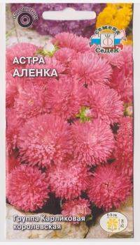 Астра Аленка