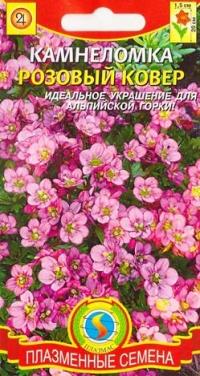 Камнеломка Розовый ковер