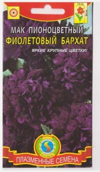 Мак Фиолетовый Бархат