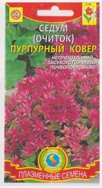 Седум (очиток) Пурпурный ковер
