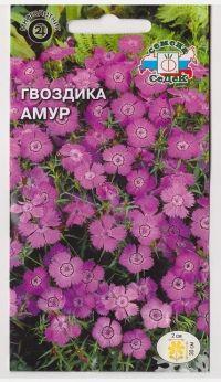 Гвоздика Амурская Амур