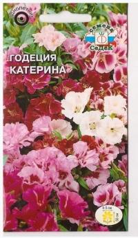 Годеция Катерина