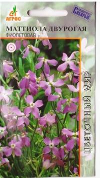 Маттиола двурогая Фиолетовая