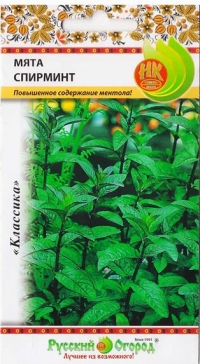 Мята Спирминт