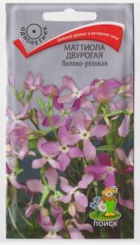 Маттиола Лилово-розовая двурогая