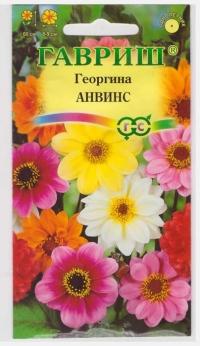 Георгина Анвинс