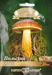 Грибы Польский гриб