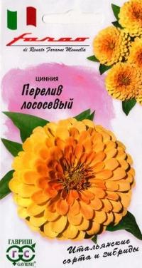 Циния Перелив Лососевый