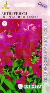Антирриум Цветочные ливни Лайлек