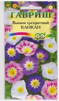 Вьюнок Канкан Трехцветный