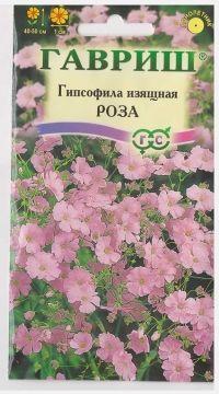 Гипсофила изящная Роза