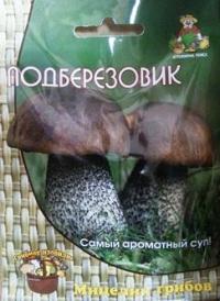 Грибы Подберезовик