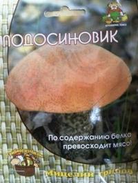 Грибы Подосиновик