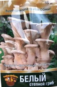 Грибы Белый степной гриб
