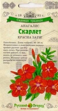 Анагалис Скарлет Красная Заря