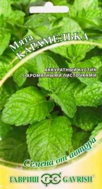 Мята Карамелька