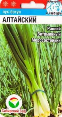 Лук Батун Алтайский