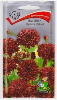 Василек Карлик Красный