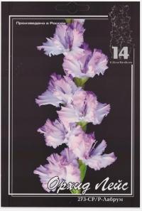Орхид Лейс (Орхидейные кружева)