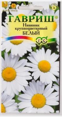 Нивяник Крупноцветковый Белый