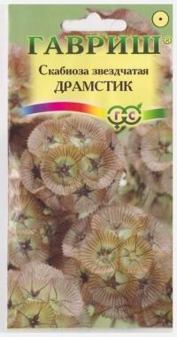 Скабиоза звездчатая Драмстик