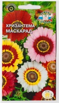 Хризантема Маскарад