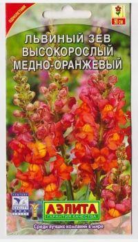 Львиный зев Высокорослый Медно-оранжевый