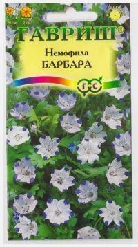 Немофила Барбара пятнистая