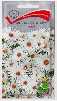 Мезембриантемум Белый