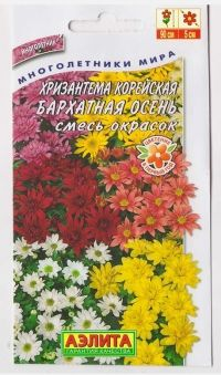 Хризантема Бархатная осень