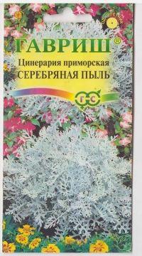 Цинерария Серебряная пыль