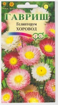 Гелиптерум Хоровод розовый