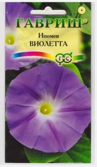 Ипомея Виолетта