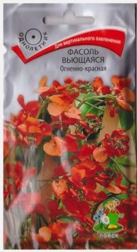 Фасоль декоративная Огненно-Красная