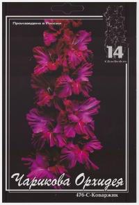 Чарикова Орхидея